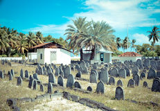 Cemetery on Maldives. A cemetery on a tropical island of Maldives Royalty Free Stock Photo