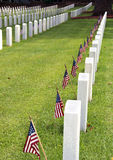 Cemetery on Memorial day. Cemetery with American flags honoring fallen soldiers on Memorial day Stock Image