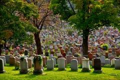Cemetery. Stock Image