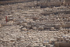Cemetery on the Mount of Olives, Jerusalem Royalty Free Stock Photo
