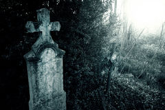 Cemetery night Stock Image