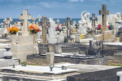 Cemetery by the Ocean Stock Image