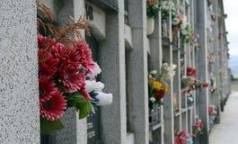 Cemetery Pamplona. Stock Image