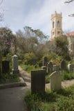 Cemetery path. A pathway through an old historic graveyard behind the Unitarian Church, Charleston, South Carolina Stock Image