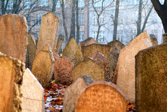 Cemetery in Prague. Jewish Cemetery in Prague (Czech Republic Royalty Free Stock Image
