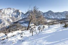 Cemetery in Romania. Cemetery in Mehedinti, Romania, in winter Stock Images