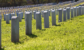 Cemetery rows Royalty Free Stock Photo
