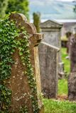 Cemetery, scotland historical gravestones with plant. Tips for travel, photography in summer Royalty Free Stock Photos