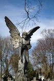 Angel. Statue of an angel at Old Municipal Cemetery (Wloclawek, Poland Royalty Free Stock Image