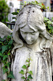 Cemetery statue of an angel. Looking down Royalty Free Stock Photos