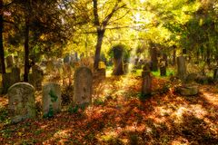 Cemetery With Sunray In Autumn Royalty Free Stock Photos
