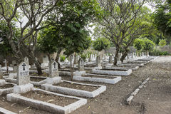 Cemetery in Tanzania. Polish Cursed soldiers cemetery in Tanzania, Africa Stock Images