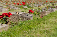 Cemetery in Terezin Royalty Free Stock Photo