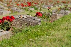 Cemetery in Terezin Royalty Free Stock Photo