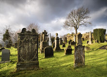 Cemetery with tombstones Royalty Free Stock Photos