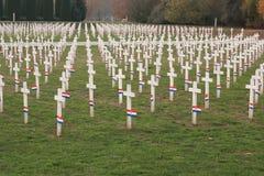 Cemetery in Vukovar Stock Image