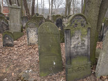 Cemetery. Warsaw, Poland - March 20, 2016: The Jewish Cemetery on Okopowa Street in Warsaw Stock Image