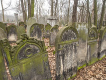 Cemetery. Warsaw, Poland - March 20, 2016: The Jewish Cemetery on Okopowa Street in Warsaw Stock Images