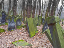 Cemetery. Warsaw, Poland - March 20, 2016: The Jewish Cemetery on Okopowa Street in Warsaw Royalty Free Stock Photography