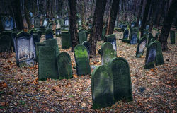 Cemetery in Warsaw Royalty Free Stock Photography