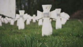 Cemetery of white military crosses 3 stock video