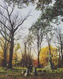 Cemetery. Woodland Cemetery in Royalty Free Stock Photography