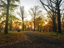 Cemetery. Woodland Cemetery in Royalty Free Stock Photos