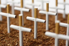 Cemetry of cigarettes Stock Image