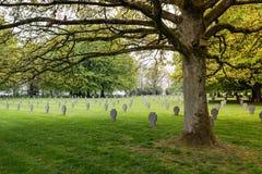 Cemitério alemão da guerra Imagem de Stock