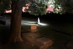 Cemitério com árvores imagens de stock