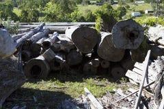 Cemitério de automóveis com logs Foto de Stock