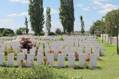 Cemitério de madeira Bélgica de Oosttaverne CWGC da primeira guerra mundial Fotos de Stock