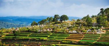 Cemitério de Vietname Imagem de Stock Royalty Free