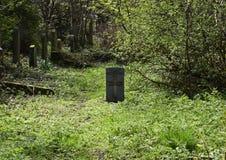 Cemitério do assombro e assustador Foto de Stock