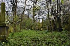 Cemitério do assombro e assustador Fotografia de Stock Royalty Free