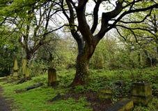 Cemitério do assombro e assustador Imagem de Stock