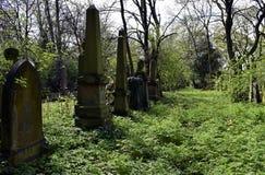 Cemitério do assombro e assustador Fotografia de Stock