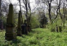 Cemitério do assombro e assustador Imagens de Stock Royalty Free