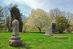Cemitério do bosque da mola imagem de stock royalty free