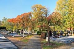 Cemitério em Trinec no outono fotos de stock royalty free