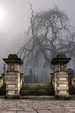 Cemitério em um dia nevoento foto de stock