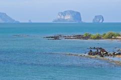 Cemitério fóssil da praia do escudo de Susan Hoi foto de stock royalty free