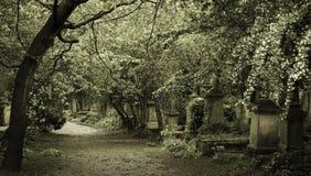 Cemitério gótico na cidade de Londres fotografia de stock