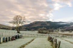 Cemitério gelado em um vale escocês em um dia de inverno com um solenoide fotografia de stock royalty free