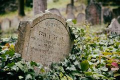 Cemitério judaico em Trebic Foto de Stock Royalty Free