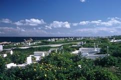 Cemitério, Mahida, Tunísia fotografia de stock royalty free