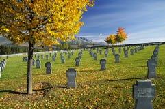 Cemitério militar Imagens de Stock