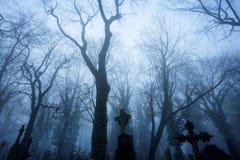 Cemitério misterioso no início da noite enevoado fotografia de stock royalty free