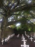 Cemitério na igreja do St Mary's na Irlanda do Dingle imagens de stock