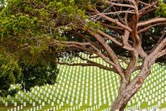 Cemitério nacional de Rosecrans do forte Foto de Stock Royalty Free